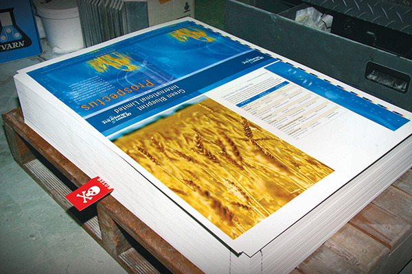 Annual report printing available from Imagesource