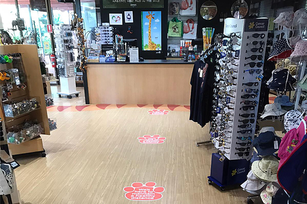 Floor signage - paw print shape social distancing decals for the Perth Zoo